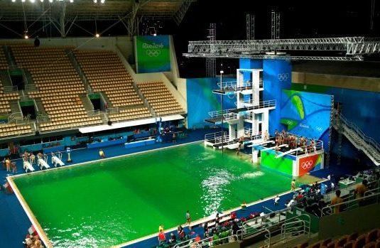 alge verzi piscina